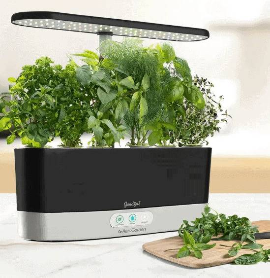 Forget Smartphones And Say Hello To Smart Counter Top Gardens
