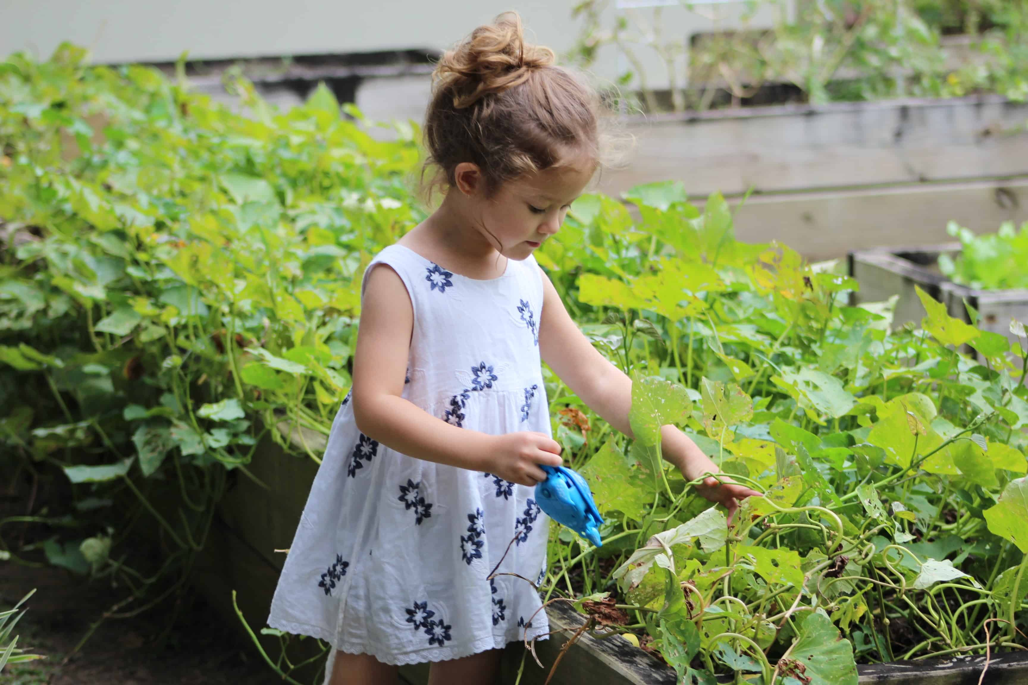 5 Best Plants For Your Kids