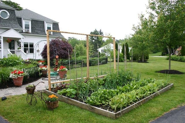 tips for your front yard garden decoration